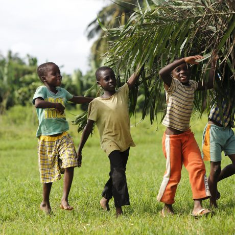 African kids help with carring palm leaves out of the jungle